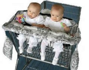 Twin Shopping Cart Cover